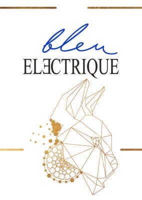 Identité visuelle// Bleu Electrique