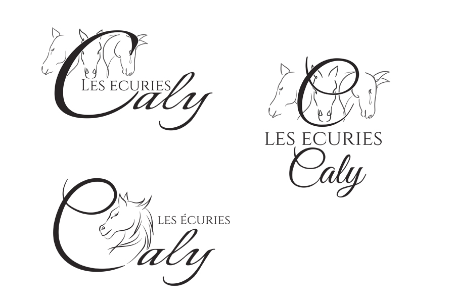 propositions Ecuries Caly